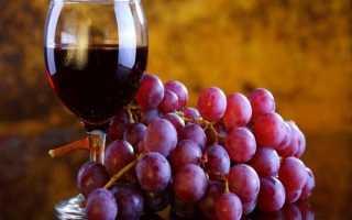Виноград Лидия: описание сорта, уход и выращивание, отзывы