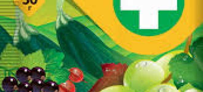 Тиовит Джет для винограда: инструкция по применению