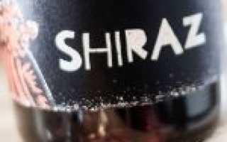 """Виноград """"Сира"""" (Шираз): характеристика сорта, описание выращивания"""
