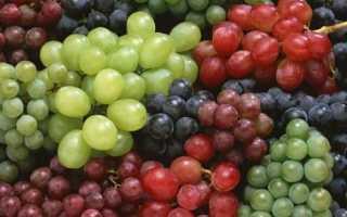 Виноград – это ягода или фрукт