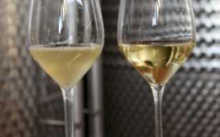 Осветление вина в домашних условиях: оклейка бентонитом, желатином, яичным белком