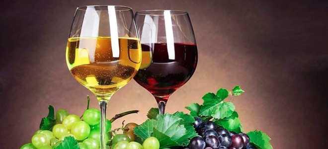 Что приготовить из винограда изабелла кроме вина: простые рецепты